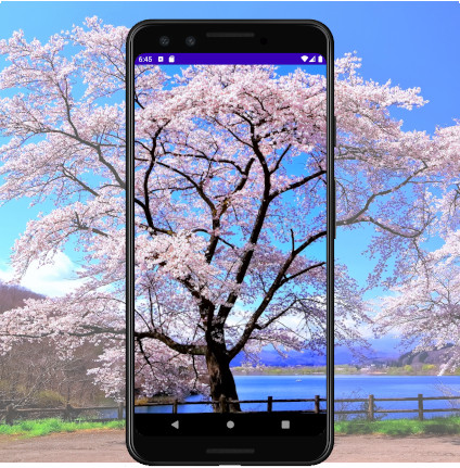 as413 m37 - [Android] ImageView ScaleType 画像をScreenにフィットさせる