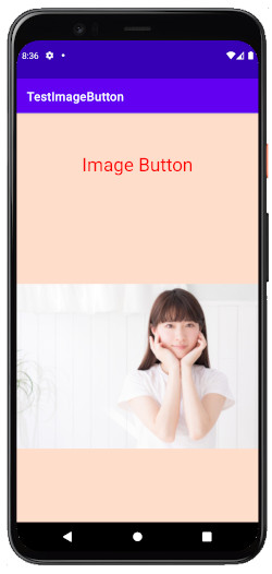 as413k m12b - [Android & Kotlin] ImageButton とButtonに画像を貼る