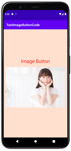 as413k m17 - [Android & Kotlin] ImageButton とButtonに画像を貼る