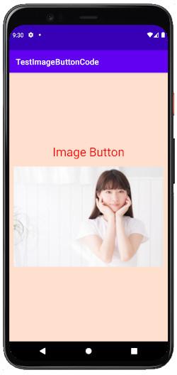 as413k m17 - [Android & Kotlin] ImageButton とButtonに画像を貼る