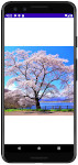 as413 m44 00 - [Android] ImageView ScaleType 画像をScreenにフィットさせる