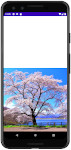 as413 m46 00 - [Android] ImageView ScaleType 画像をScreenにフィットさせる