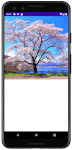 as413 m48 00 - [Android] ImageView ScaleType 画像をScreenにフィットさせる