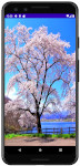 as413 m50 00 - [Android] ImageView ScaleType 画像をScreenにフィットさせる